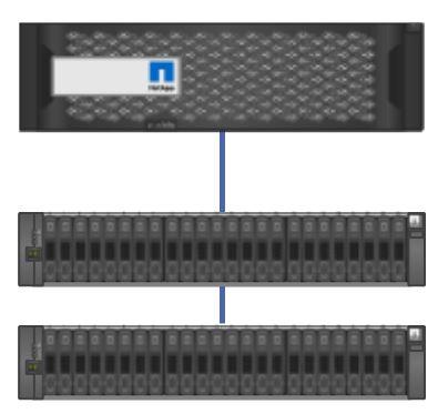 Controller to Disk Shelf SAS connections