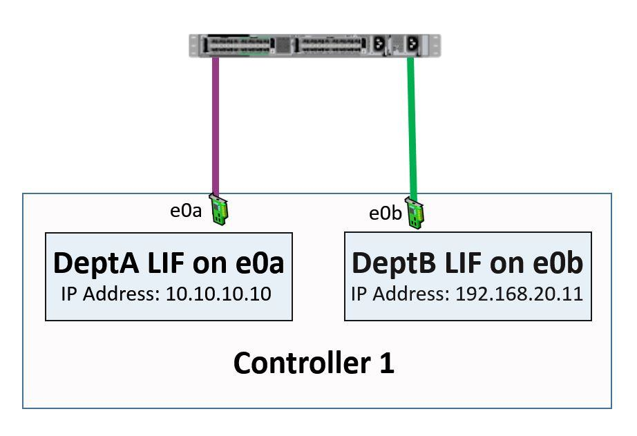 NetApp LIFs homed on Physical Ports example